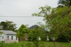 Belize (175)
